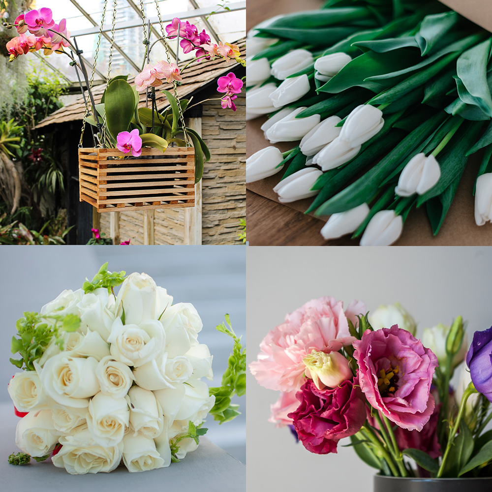 Symbolic Meaning Of Tulips, roses, peonies and orchids